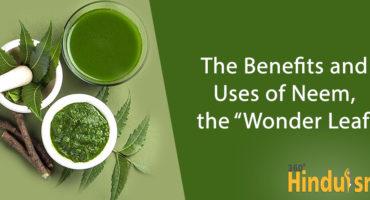 Neem leafs benefit