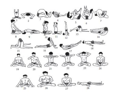 hatha yoga practices energy expenditure respiratory